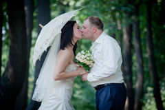 Newlyweds portrait Royalty Free Stock Images