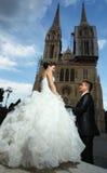 Newlyweds posing at evening Royalty Free Stock Photo