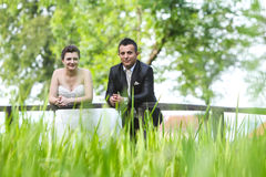 Newlyweds posing on wooden bridge Royalty Free Stock Images