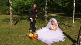 Newlyweds Relax In Nature stock video