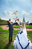 Newlyweds release pigeons. At the wedding walk stock image