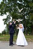 Newlyweds release pigeons Royalty Free Stock Images