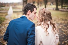 Newlyweds sit on the wooden bench in an autumn garden, back view. royalty free stock image