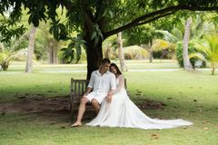 Newlyweds are sitting on an old bench under a huge tropical tree. Wedding on a tropical island stock photo
