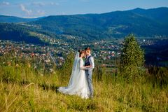 Newlyweds smile and hug each other among the meadow on top of the mountain. Wedding walk in the woods in the mountains, the gentle. Emotions of the couple stock image
