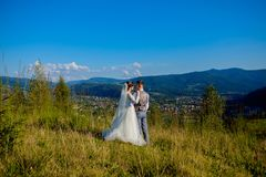 Newlyweds smile and hug each other among the meadow on top of the mountain. Wedding walk in the woods in the mountains, the gentle. Emotions of the couple royalty free stock photography