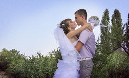 Newlyweds standing face to face. Loving couple embracing on a riverside Stock Photos