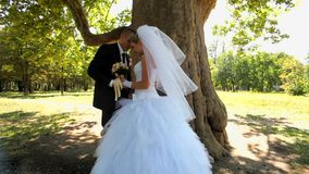 Newlyweds Standing Under A Tree stock video footage