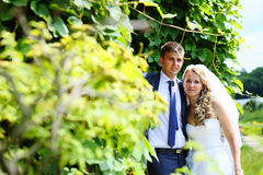 Newlyweds in a summer park Royalty Free Stock Photos