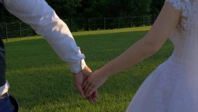 Newlyweds are taken in hand stock video footage
