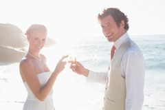 Newlyweds toasting with champagne smiling at camera Royalty Free Stock Photography