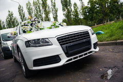 Newlyweds traveling in white decor wedding car Stock Image