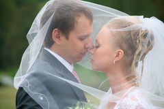 Newlyweds under a veil Stock Photo