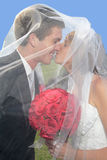 Newlyweds under veil Royalty Free Stock Photography