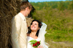 Newlyweds in the village Stock Photography