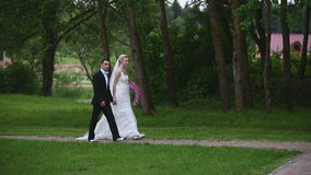 Newlyweds walk in the park stock video footage
