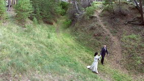 Newlyweds walking along the big forest stock video footage