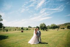 The newlyweds are walking along the golf course with green grass. The groom holds the bride`s hand. Beautiful couple on stock images