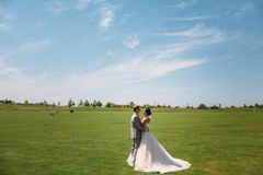 Newlyweds are walking along the green field of the golf club on a wedding day. The groom in a business suit is gray and stock images