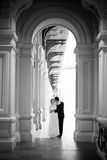 Newlyweds walking and kissing Royalty Free Stock Photo