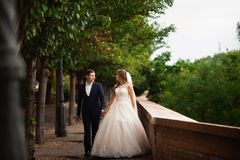 Newlyweds walking in the park. Happy luxury wedding couple walking and smiling among trees stock photography