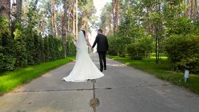 Newlyweds walking in park rear view stock video