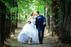 Newlyweds walking in the park stock photography