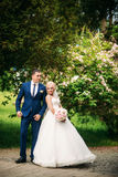 The newlyweds are walking in the park on the wedding day. The bride and groom Enjoying at the wedding day. Sunny weather. Stock Photo