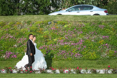 Newlyweds walking on pathway with flowers Royalty Free Stock Photo