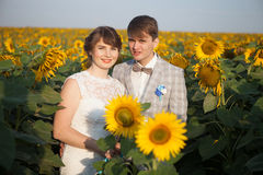 Newlyweds on Wedding Day. Royalty Free Stock Images