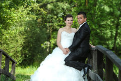 Newlyweds on wooden bridge in nature Stock Images