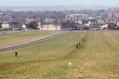 Newmarket Galopuje konia wyścigowego szkolenie fotografia royalty free