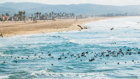 Newport Beach California 2 Stock Photos