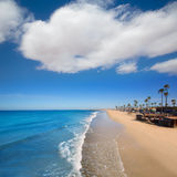 Newport beach in California with palm trees Stock Photography