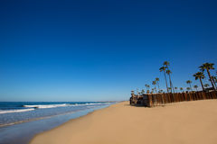 Newport beach in California with palm trees Royalty Free Stock Images