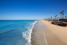 Newport beach in California with palm trees Royalty Free Stock Photography