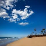 Newport Beach w Kalifornia z drzewkami palmowymi Obrazy Stock