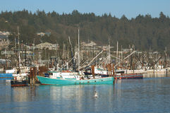 Newport Oregon. Commercial Crabbing Boats returning with catch into Yaquina Bay, Newport Oregon Stock Image