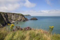 Newport sander, Pembrokeshire Royaltyfria Foton
