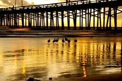 Newport-Strand Lizenzfreies Stockfoto
