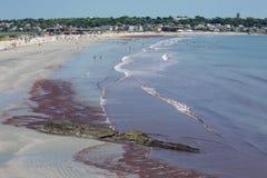 Newport-Strand Rhode Island, USA Stockbild