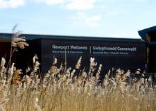 Newport wetlands Royalty Free Stock Photography