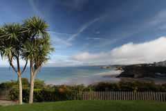 Newquay Cornwall Royalty Free Stock Images