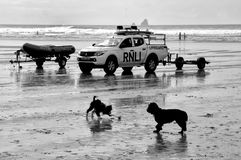 Newquay, Cornwall, UK - May 09 2018: Black and white shot of RNLI Lifeguard truck on a Cornish surfing beach at Newquay, with two. Dogs playing in foreground stock photo