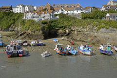 Newquay Harbour in Cornwall, England Royalty Free Stock Images