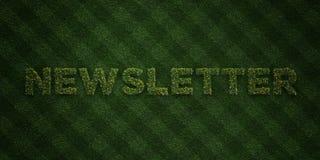 NEWSLETTER - neue Grasbuchstaben mit Blumen und Löwenzahn - 3D übertrug freies Archivbild der Abgabe Lizenzfreie Stockfotos
