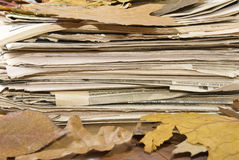 Newspapers and autumn leaves Stock Image