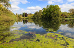 Newstead Abbey, with the Garden Lake Royalty Free Stock Images