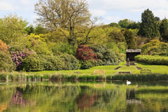 Newstead Abbey Garden Lake and gardens Stock Photography