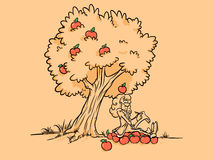 Newton apple tree discover gravity posters. Newton apple tree discover gravity cartoon opens the law of gravity wallpapers posters royalty free illustration